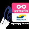 Payconic logo big